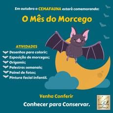 Cemafauna comemora o Dia do Morcego com diversas atividades