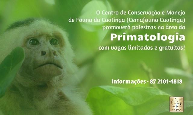 palestras primatologia.jpg