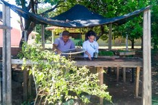 No total, já foram realizadas 152 visitas técnicas a viveiros de 45 municípios de Pernambuco e Ceará.