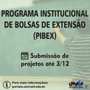 PIBEX.png
