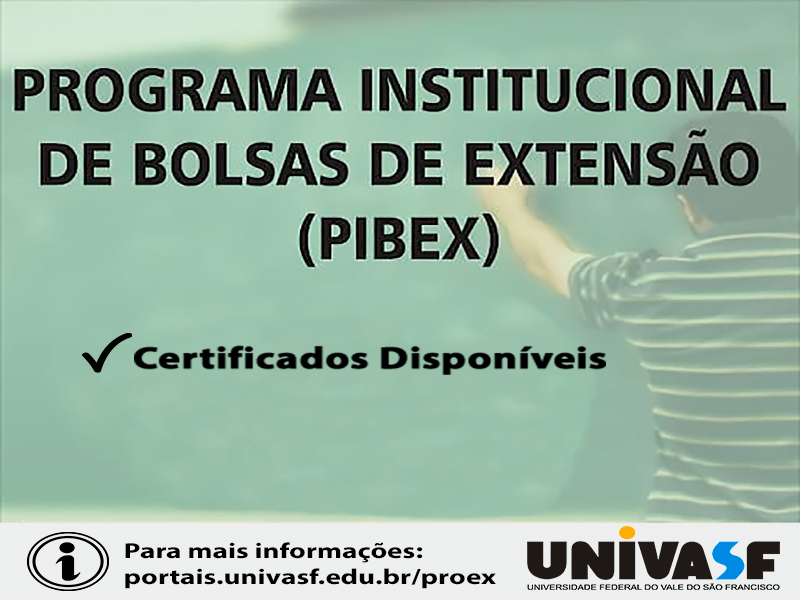 Pibex2.jpg